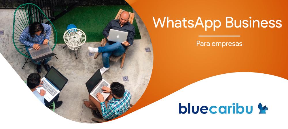 Curso WhatsApp Marketing