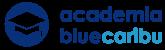 Academia BlueCaribu: marketing digital y ventas